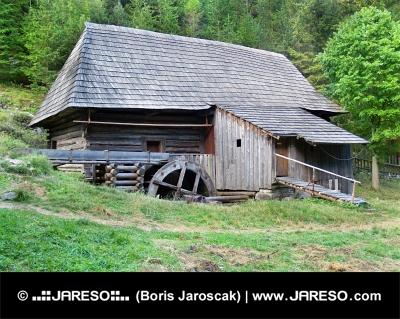 Запазени дървени вода-дъскорезница в Oblazy