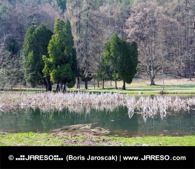Парк и езеро в Turcianska Stiavnicka
