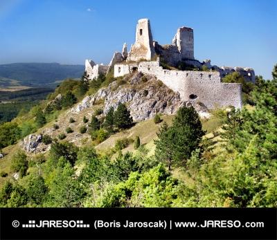 Руините на замъка на Cachtice, скрити в зелената гора