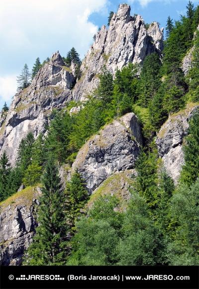 Масивните скали в Vratna Valley, Словакия