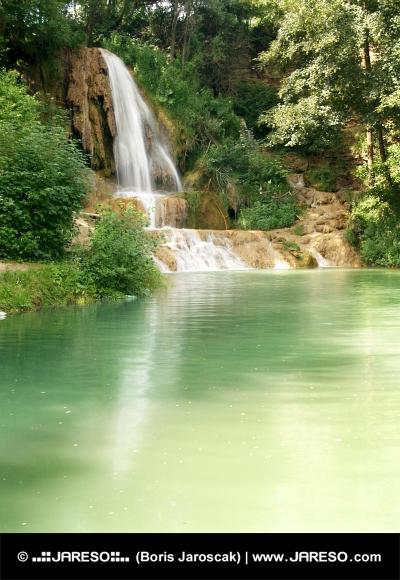 Vandfald i grøn skov