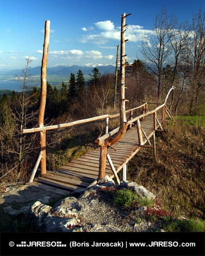 Træbro