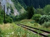 Gamle jernbanen i grønne landskaber