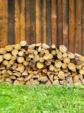 Pile of hakkede tr?stammer