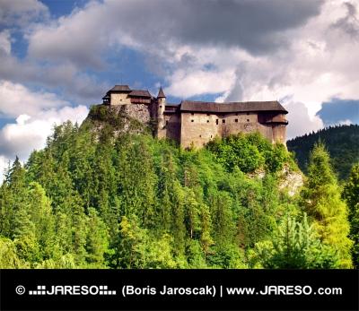 Nordseite der Burg Orava bei bewölktem Tag
