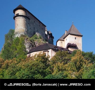 Orava Burg auf einem hohen Felsen, der Slowakei