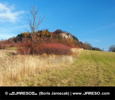 Herbst in Vysnokubinske Skalky, Slowakei