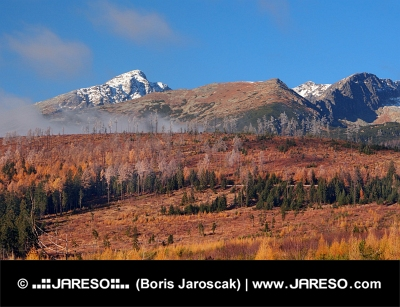 Krivan, Hohe Tatra im Herbst, in der Slowakei