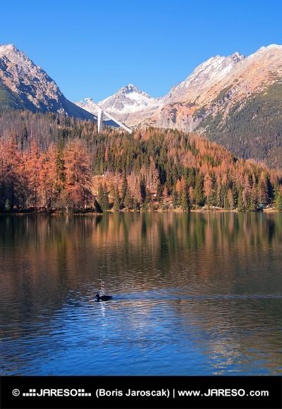 Herbst in der Hohen Tatra, Strbske Pleso
