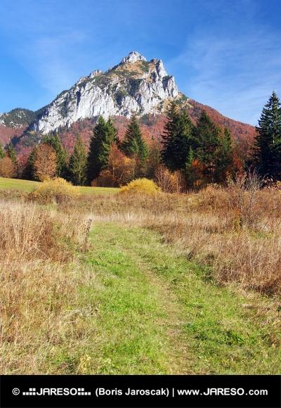 Tourist Weg zum Velky Rozsutec, Slowakei