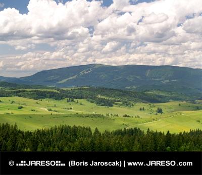 Wald und Kubinska Hola, Slowakei