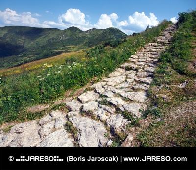 Τουριστική διαδρομή για Chleb κορυφή