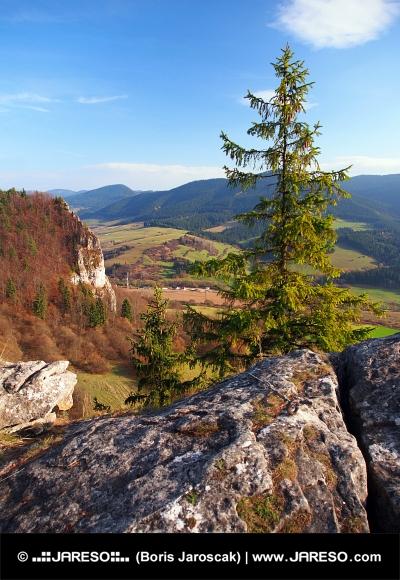 Φθινόπωρο προοπτικές από Vysnokubinske Skalky