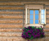 Παράθυρο και τα λουλούδια