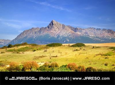 Las montañas del Alto Tatra en verano
