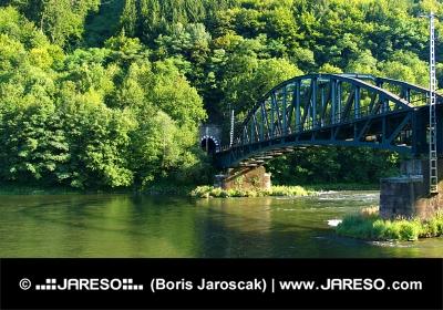 Puente del ferrocarril sobre el río Vah y túnel cerca Strecno, Eslovaquia