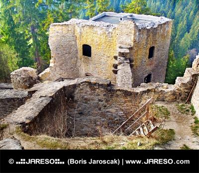 Interior arruinado de Likava Castillo, Eslovaquia