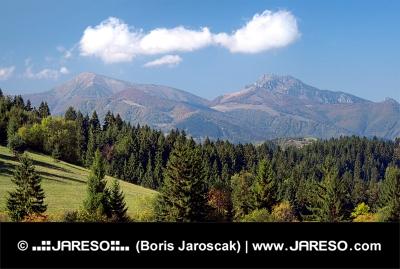 Bosque y Mala Fatra encima de la aldea Jasenova