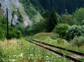 Antiguo ferrocarril en el paisaje verde
