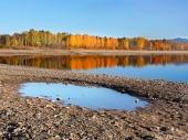 Reflexión de árboles en Liptovska Mara durante el oto?o en Eslovaquia