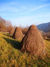 Tres montones de heno preparados en la pradera