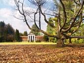 Parque del otoño con el árbol enorme y arboreto en Turcianska Štiavnička, Eslovaquia