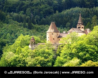 La partie inférieure du château d'Orava caché dans la forêt