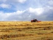 Tracteur sur le champ jaune