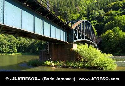 स्लोवाकिया में गर्मियों के दौरान Strecno गांव के निकट रेल पुल