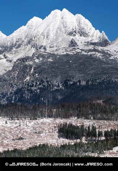 सर्दियों में उच्च Tatras की चोटियों