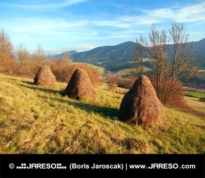 Haystacks के साथ शरद ऋतु घास का मैदान