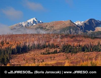 Krivan, उच्च Tatras शरद ऋतु में, स्लोवाकिया
