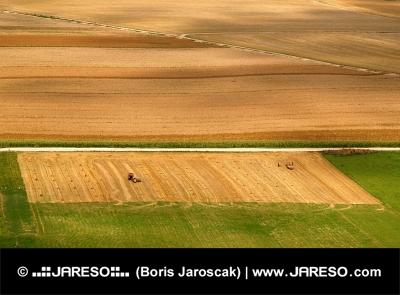 गर्मियों में खेतों का हवाई दृश्य
