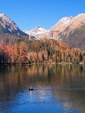 उच्च Tatras, Strbske Pleso में शरद ऋतु