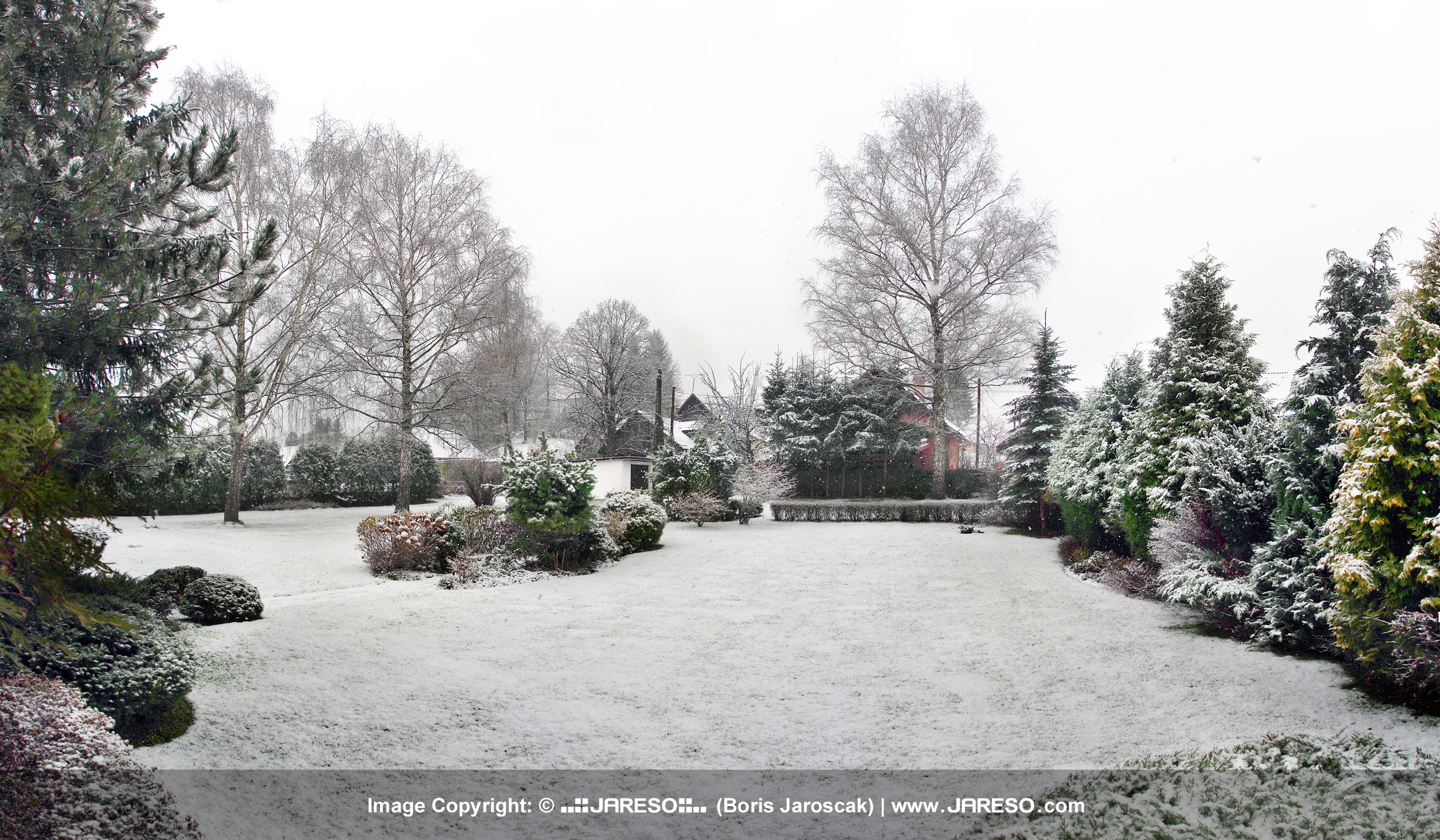Our garden in the Vysny Kubin village, Orava region, northern Slovakia