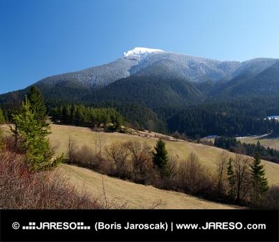 Montagna e campi in giorno di primavera chiaro