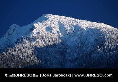 Vetta del Monte Grande Choc in inverno