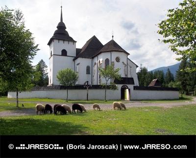 Chiesa gotica in Pribylina con le pecore