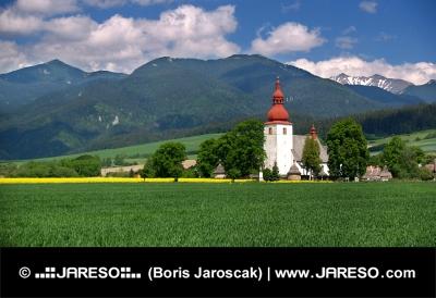 草原と古い教会