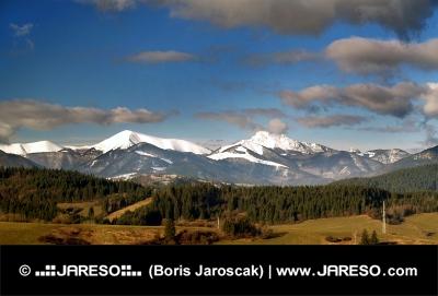 冬のマラFatraの草地や丘