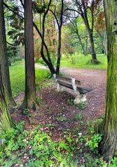 緑豊かな公園のベンチ