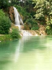 緑の森の中の滝