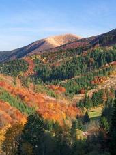 秋のマラFatra国立公園