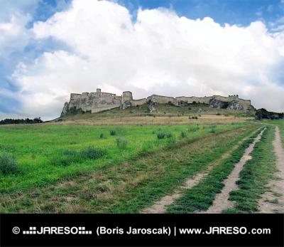 Field weg naar Spis Castle in de zomer
