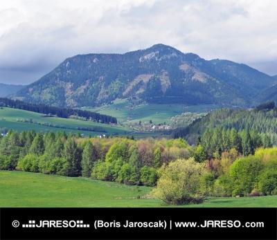 Platteland met Pravnac heuvel in de buurt Bobrovnik