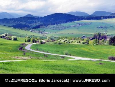 Groene weiden boven Bobrovnik dorp