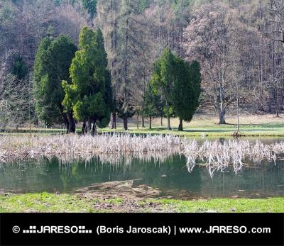 Park en meer in Turcianska Stiavnicka
