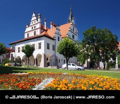 Bloemen en stadhuis in Levoca, Slowakije