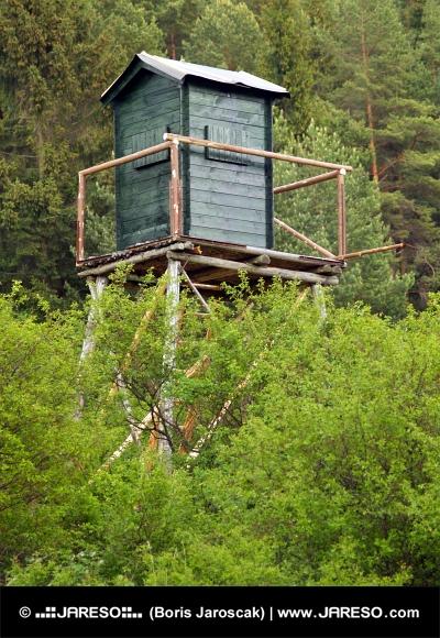 Kijk toren in diepe woud