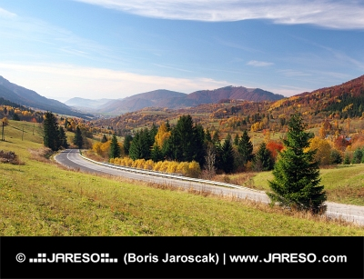 Weg naar Terchova dorp, Slowakije